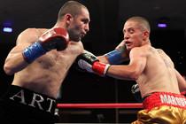 boxers 41