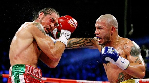 cotto wins